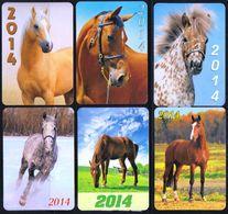 Russia 2014 5 Pocket Calendars Horses Horse Chevaux Cheval Caballos Cavalli Paarden Pferd (Sv.) - Calendars