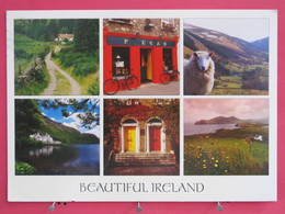 Irlande - Beautiful Irland - Joli Timbre - Scans Recto-verso - Offaly