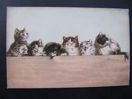 CPA - Illustrateur : ADAM -  CHAT - Cats