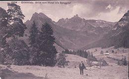 Oey-Dietigen, Grimmialp, Le Senggital (6214) - BE Berne