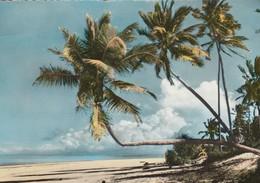 11882-COASTAL SCENE-EAST AFRICA-FG - Cartoline