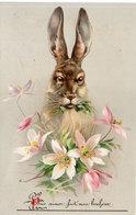 Lapin Et Fleurs      (104389) - Illustrateurs & Photographes
