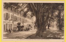 ANNOT Le Jardin De Ville Et Les Vieux Platanes - France