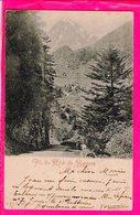 Cpa  Carte Postale Ancienne  - Pic Du Midi De Bigorre - Autres Communes