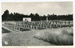 Lommel - Pools Militair Kerkhof - Lommel