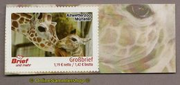 L02) Privatpost - Brief Und Mehr - Allwetterzoo Münster - Giraffe (Giraffa) - Giraffen