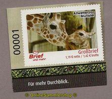 L02) Privatpost - Brief Und Mehr - Allwetterzoo Münster - Giraffe (Giraffa) - Privatpost
