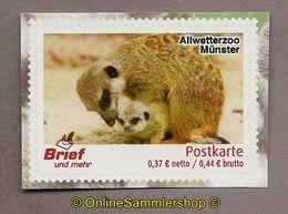 L02) Privatpost - Brief Und Mehr - Allwetterzoo Münster - Erdmännchen (Suricata Suricatta) - Privatpost