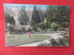 Botanical  Gardens Naoier New Zealand >ref 2916 - New Zealand