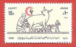 EGITTO EGYPT MNH - 1991 The 50th Anniversary (1990) Of Veterinary Surgeons' Syndicate  - 10 Piastre - Michel AR EG 1702 - Égypte