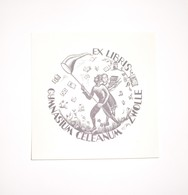 Ex-libris Moderne XXème Illustré -  Allemagne - Chasse Aux Livres à L'épuisette - Gymnasium CELEANUM - ZWOLLE - Ex-libris
