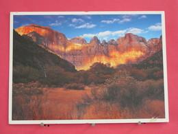 Etats Unis - Utah - Bryce Canyon Zion - National Parks - Joli Timbre - Scans Recto-verso - Zion