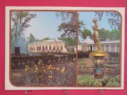 Russie - Petrodvorets - Peterhof - Fontaine De Catherine - Recto-verso - Georgia