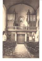 Humelgem (Steenokkerzeel)-Kerk Van Humelghem-Sint-Catharinakerk-Hoogzaal En Orgel-Buffet-Orgues - Steenokkerzeel