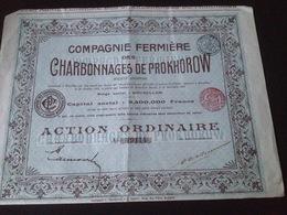 Action Compagnie Fermière Des Charbonnages De Prokhorow - Mines