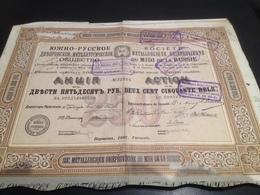Action Sociète Metallurgique Dnieprovienne Du Midi De La Russie 1902 - Industrie