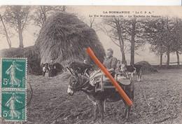 La Normandie - La C.P.A - La Vie Normande - 64 - La Vachère Du Bessin - Autres