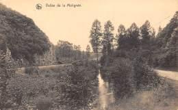 Vallée De La Molignée - Onhaye