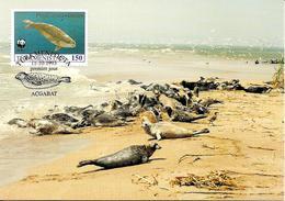 1993 - TURKMENISTAN Туркмениста́н  - Caspian Seal - Phoque De La Mer Caspienne - Turkménistan