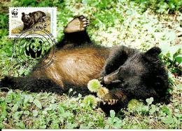 1989 - PAKISTAN  Peshawar - Himalayan Black Bear - Ours Noir D'Himalaya - Pakistan