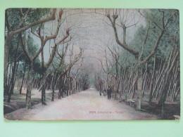 "United Kingdom 1910 Postcard """"Italia - Alterocca Terni - Trees"""" Darlington To London - Georges V - Storia Postale"