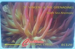 52CSVG Giant Sea Anemone EC$20 - Saint-Vincent-et-les-Grenadines