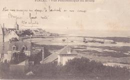 PIRIAC  -  VUE PANORAMIQUE DU BOURG - Piriac Sur Mer