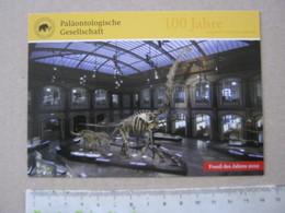 FS1 FOSSILI POST CARD GERMANY - FOSSIL DES JAHRES 2012 - BRACHIOSAURUS BERLIN BERLINO - Fossils