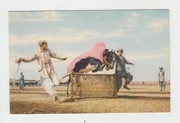 PAKISTAN - LAHORE / JUMPING BULL - RODEO - Pakistan