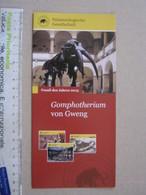 FS1 FOSSILI DEPLIANT - GERMANY FOSSIL DES JAHRES - 2013 GOMPHOTHERIUM VON GWENG - Fossils