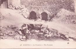 ALTE   AK   KORCA - Koritza / Albanien   - La Fontaine - Ca. 1915 - Albania