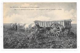 80 - LA PICARDIE HISTORIQUE Et PITTORESQUE : Le Betterave Et Le Sucre, Chargement Transfert Usine - France