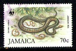 JAMAICA 1984 - From Set Used - Jamaica (1962-...)