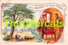 CHROMO LES ARBRES ET LEURS USAGES TISANE DES PERES CELESTINS  L'ACAJOU - Trade Cards