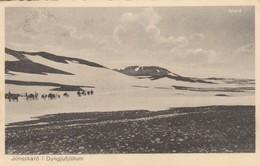 ISLANDE - Jönsskaro I Dyngjufjöllum - Iceland