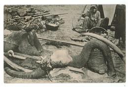 20415  CPA  Morceaux D' Elephants !! Superbe  Document !!! De  1913 ,  RARE ! - Brazzaville