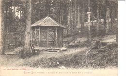 (88) Vosges - CPA - Saint Die - Kiosque Et Fontaine Du Sapin Sec à L'Ormont - Saint Die