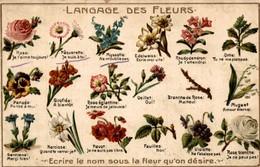 LANGAGE DES FLEURS - Fleurs