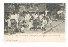 Ceylan Ceylon Sri Lanka Native Life In Ceylon TB 2 Scans - Sri Lanka (Ceylon)