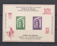 Feuillet De Luxe 21 Europa 1956 Neuf - Libretti Di Lusso