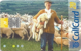 Ireland - Eircom - Beautiful Ireland - Farmer & Sheeps - 20Units, 06.1999, 87.500ex, Used - Ireland