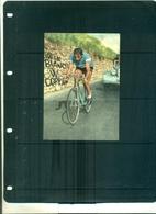 CARTE POSTALE CYCLISME FAUSTO COPPI 1951 AVEC AUTOGRAPHE AU VERSO A PARTIR DE 5 EUROS - Radsport
