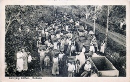 Costa-Rica - Sabana - Carrying Coffee - Costa Rica