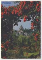 GF (77) 479, Provins, Editions De Massy M 1070, Publicité Pèpinières Et Roseraies J Vizier - Provins