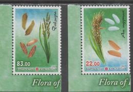 KYRGYZSTAN, 2017, MNH, FLORA OF KYRGYZSTAN, PLANTS, RICE, 2v - Food