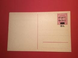 Poland 1919 POCZTA POLSKA Postal Stationery Mint (Polen Ganzsache Cover Brief Lettre Entier Postal Pologne - ....-1919 Übergangsregierung