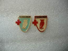 2 Pin's De Couleurs Differentes, La Chouette, Embleme De La Commune De VILLAGE-NEUF (Dépt 68) En Alsace - Villes