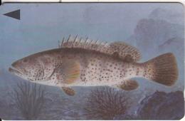 BAHRAIN(GPT) - Fish Of Bahrain/Grouper, CN : 39BAHS/B, Used - Bahrain