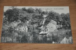 1031- Descente En Barquette,  Rocher De Rehat - Animée - Chiny