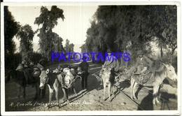 92486 PERU AREQUIPA COSTUMES NATIVE SELLER VENDEDORES AMBULANTES POSTAL POSTCARD - Peru